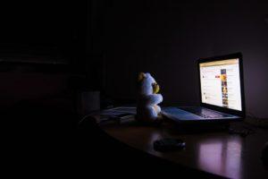 ourson devant écran web