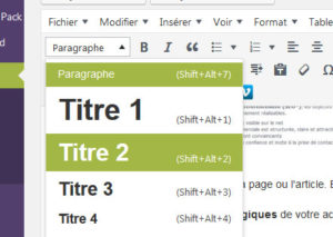 capture-titre-editeur-wordpress