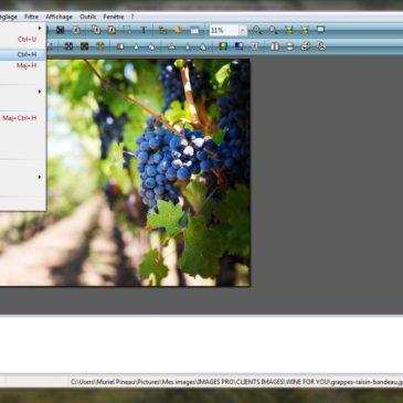 Tutoriel : recadrer une image avec Photofiltre pour créer un bandeau web
