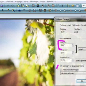Tutoriel : réduire la taille et le poids d'une image avec Photofiltre 7