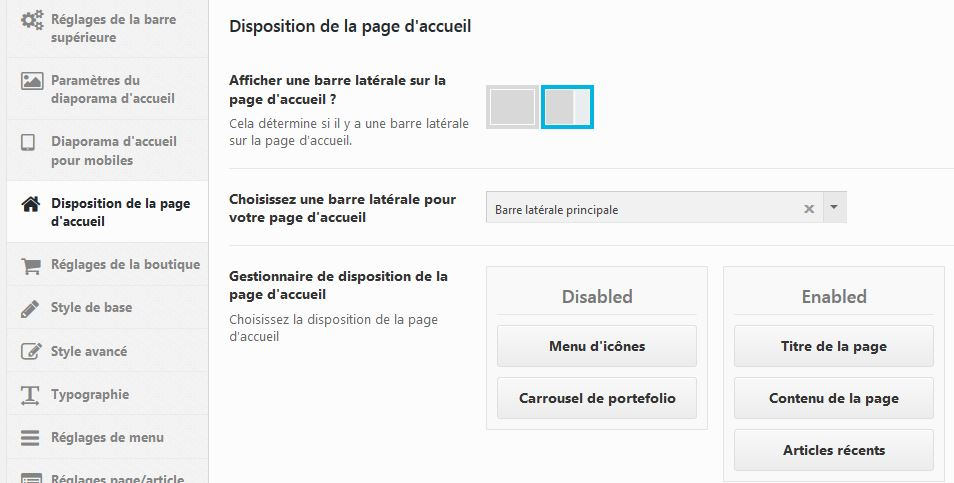 Capture d'écran options du thème wordpress
