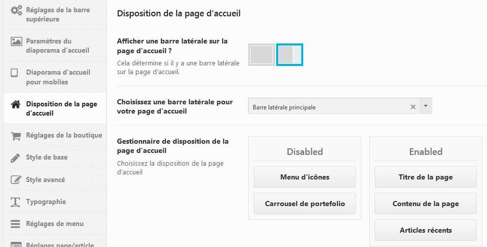 Capture d'écran options du thème wordpress