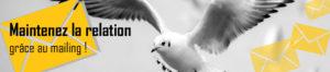 bandeau-formation -mailing oiseau et enveloppes postales
