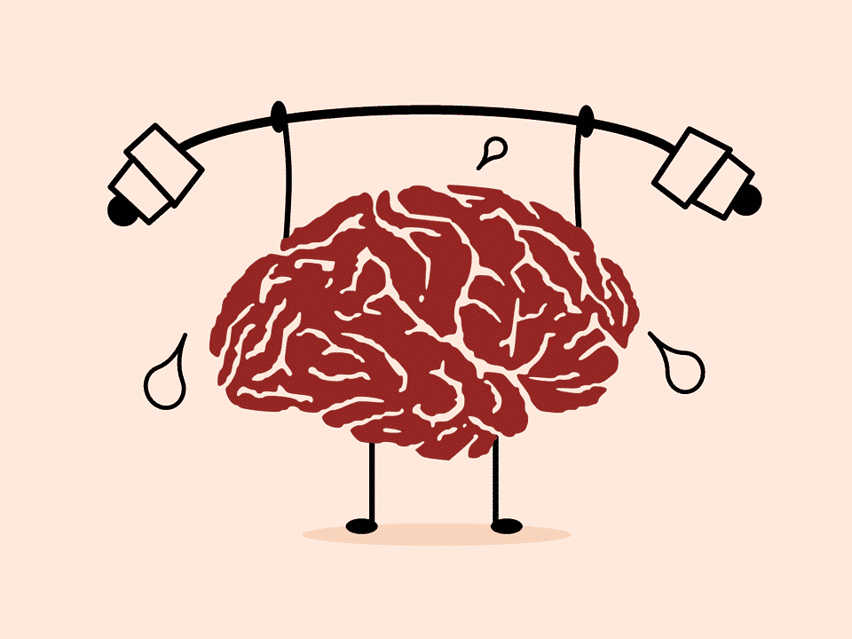 cerveau à l'entrainement