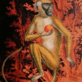 singe dans tableau